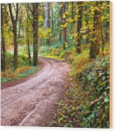 Forest Footpath Wood Print by Carlos Caetano
