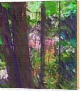 Forest For The Trees Wood Print