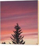 Forest Grove Sunset Wood Print