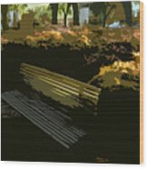 Forest Gump's Bench Wood Print