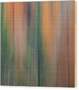 Forest Illusions -autumn Pastels Wood Print