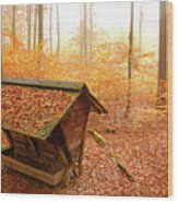 Forest In Autumn With Feed Rack Wood Print