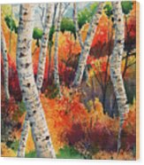 Forest In Color Wood Print