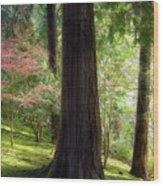 Forest In Portland Japanese Garden Wood Print