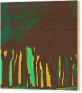 Forest In The Hidden Wood Print
