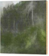 Forest Landscape 10-31-09 Wood Print
