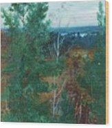 Forest Landscape Wood Print