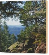 Forest Lookout Wood Print