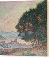 Forest Near St Tropez Wood Print