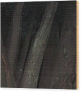 Forest Nightscape Wood Print