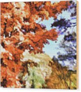 Forest Of Fall Colors Wood Print