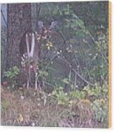 Forest Peek A Boo Wood Print
