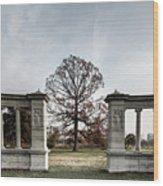 Forest Park Columns Wood Print