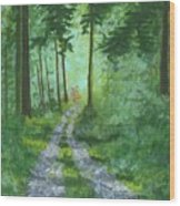 Forest Path 2 Wood Print