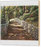 Forest Path White Cliff Wood Print