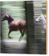Forest Run Wood Print
