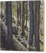 Forest Shadows Wood Print