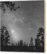 Forest Silhouettes Constellation Astronomy Gazing Wood Print