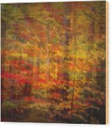 Colorful Forest, Smoky Mountains, Tennessee Wood Print