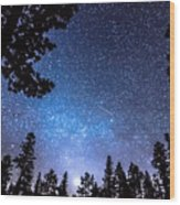 Forest Star Gazing An Astronomy Delight Wood Print
