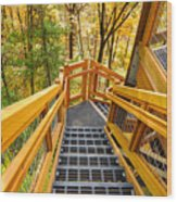 Forest Tower Steps Wood Print