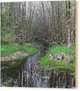 Forest Trees Creek Pathway Wood Print