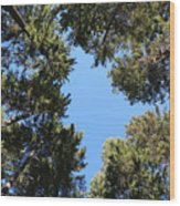 Forest Treetops Wood Print