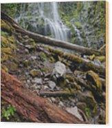 Forest Vibrance Wood Print