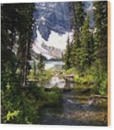Forest View To Mountain Lake Wood Print