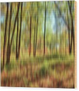 Forest Vision Wood Print