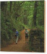 Forest Walkers, El Camino, Spain Wood Print