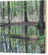 Forest Wetland Wood Print