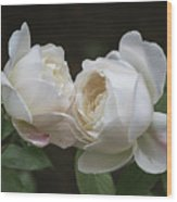 Forever And Always - Desdemona Roses Wood Print