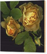 Forever Yellow Roses Wood Print