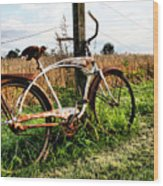 Forgotten Bicycle Wood Print