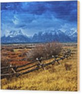 Forgotten Fence Wood Print