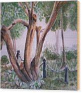 Forgotten Past Wood Print