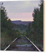 Forgotten Train Track Wood Print