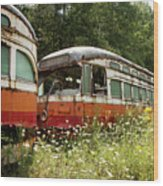 Forgotten Trains Wood Print