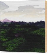 Forrest View Wood Print