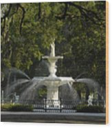 Forsyth Fountain 1858 Wood Print