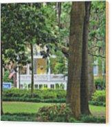 Forsyth Park Inn In Savannah  3205 Wood Print