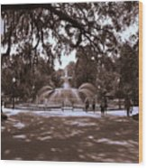 Forsyth Park Sepia Wood Print
