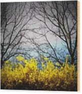 Forsythia By The Mountains Wood Print