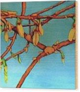 Forsythia Wood Print