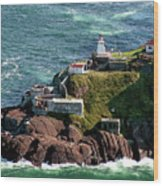 Fort Amherst At St. Johns New Foundland Wood Print