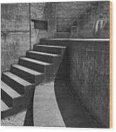 Fort Casey Steps 3939 Wood Print