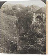 Fort De La Malmaison Wood Print
