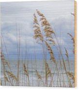 Fort Fisher Wood Print