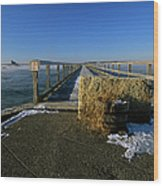 Fort Foster - Kittery Maine Usa Wood Print